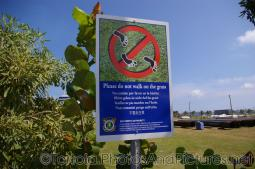 Please Do Not Walk on Grass sign in Tortola.jpg
